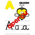 Affiches alphabet 1er cycle