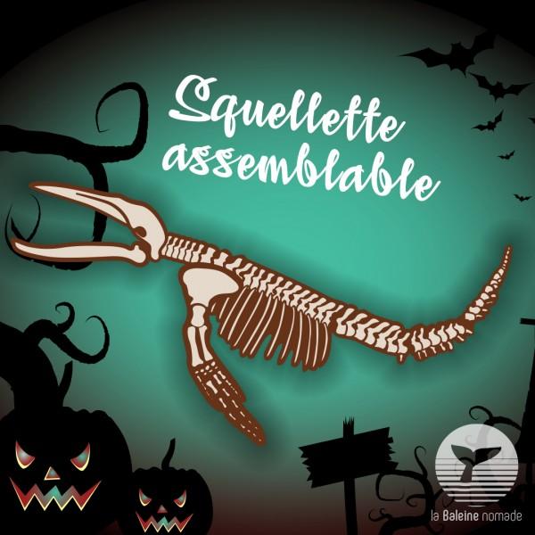*Halloween* Squelette de baleine à bosse