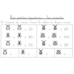 Mes petites équations : les insectes