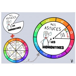 roue des homonymes/homophones