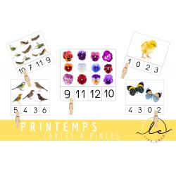 Cartes à compter/dénombrer_PRINTEMPS