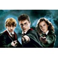 Mots de substitution Harry Potter