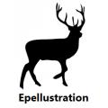 Epellustration