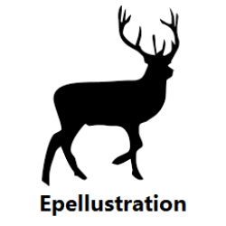 Epellustration