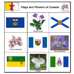 Flags and Flowers of Canada