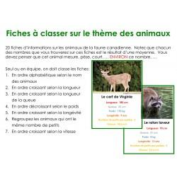Fiches à classer sur le thème des animaux