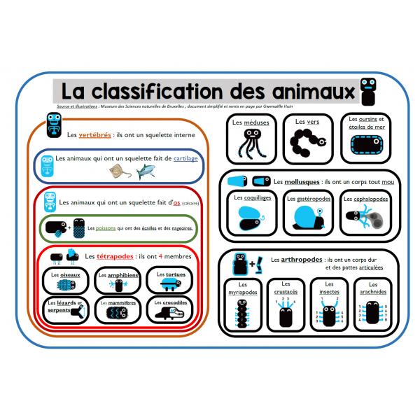 La classification phylogénétique des animaux