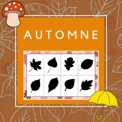 Tableau des ombres - Automne