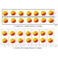 Le sens de la multiplication &  de la division
