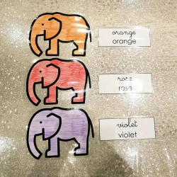 Référentiel collectif - vocabulaire des couleurs