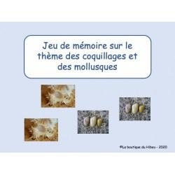 Jeux de mémoire : coquillages et mollusques