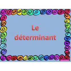 DÉTERMINANT