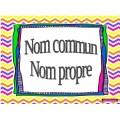NOM COMMUN/PROPRE