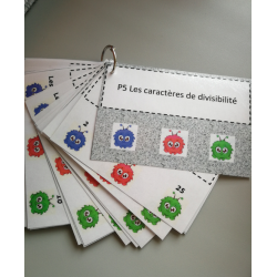 Cartes à pinces caractères de divisibilité