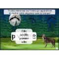 Activité interactive forêt -Mots à l'étude de 1re