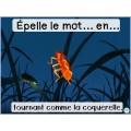 Activité interactive insectes-Mots à l'étude de 2e