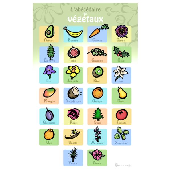 Affiche : L'Abécédaire des végétaux
