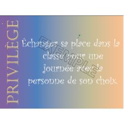 Privilèges de classe