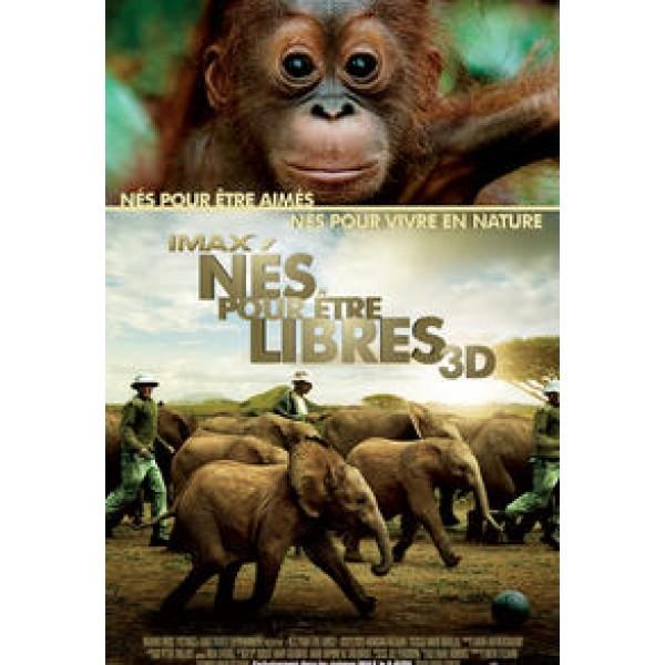 Écrire texte informatif sur film documentaire