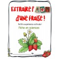 Extraire l'ADN d'une fraise! Sciences