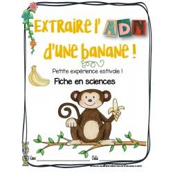 Extraire l'ADN d'une banane! Sciences