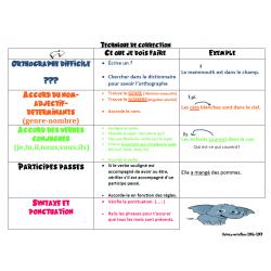 Affiche pour la correction en français