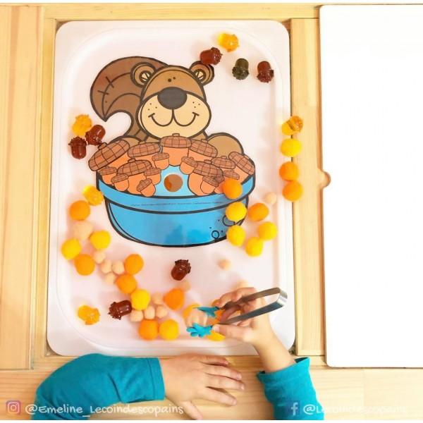 nourrit l'écureuil