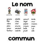 Afiches de grammaire (1er cycle)