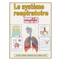 Le système respiratoire simplifié