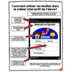 *Cahier interactif #1: Lexique