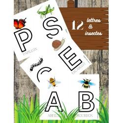 12 lettres et insectes