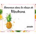 Organisation de classe Flamants et Ananas
