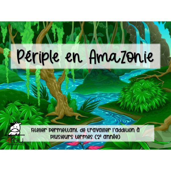 Périple en Amazonie
