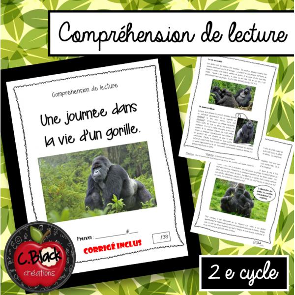 Une journée dans la vie d'un gorille (2e cycle)