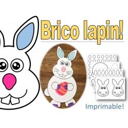 Brico Lapin