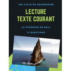 Compréhension de lecture - texte descriptif