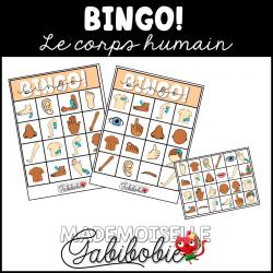 Bingo - Corps humain