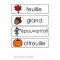 Mots-étiquettes de l'automne