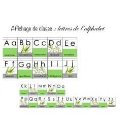 Affichage alphabet vert / nature