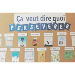 Affiche Persévérance et littérature jeunesse