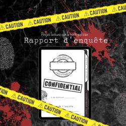 Rapport d'enquête - Projet de lecture