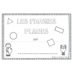 Premières écritures - figures planes
