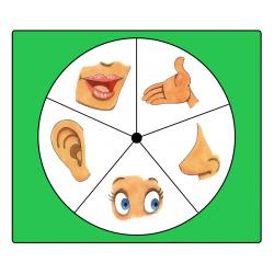 36 activités de stimulations sensorielles