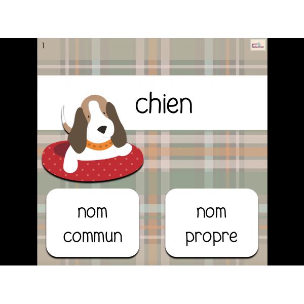 Jeu interactif : noms communs et noms propres