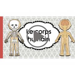 Vidéo à propos du corps humain