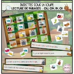 Insectes sous la loupe-Phrases sons ou, on, in, oi