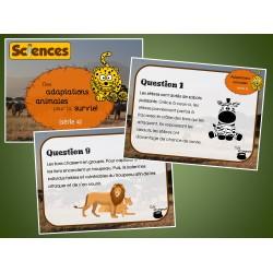 Cartes à tâches : Adaptations animales (série 4)