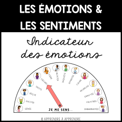 Émotions et sentiments - Indicateur