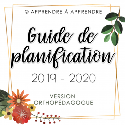 Guide de planification orthopédagogue 2019-2020