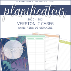 Planificateur 2020-2021 / 12 cases (sans fds)